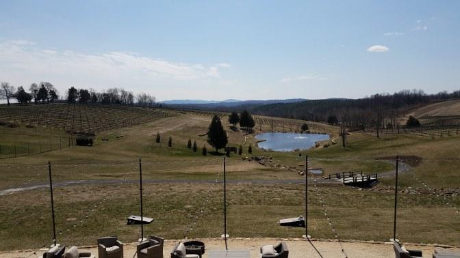 STW Pond View
